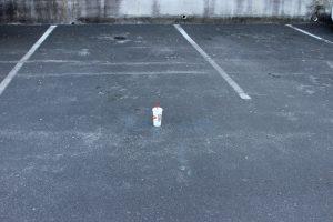 lot-litter